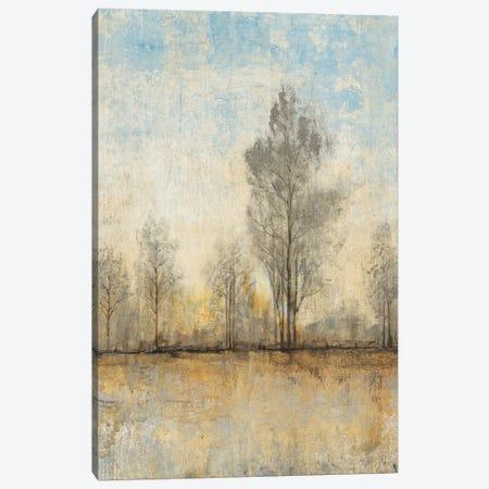 Quiet Nature I 3-Piece Canvas #TOT51} by Tim OToole Canvas Art