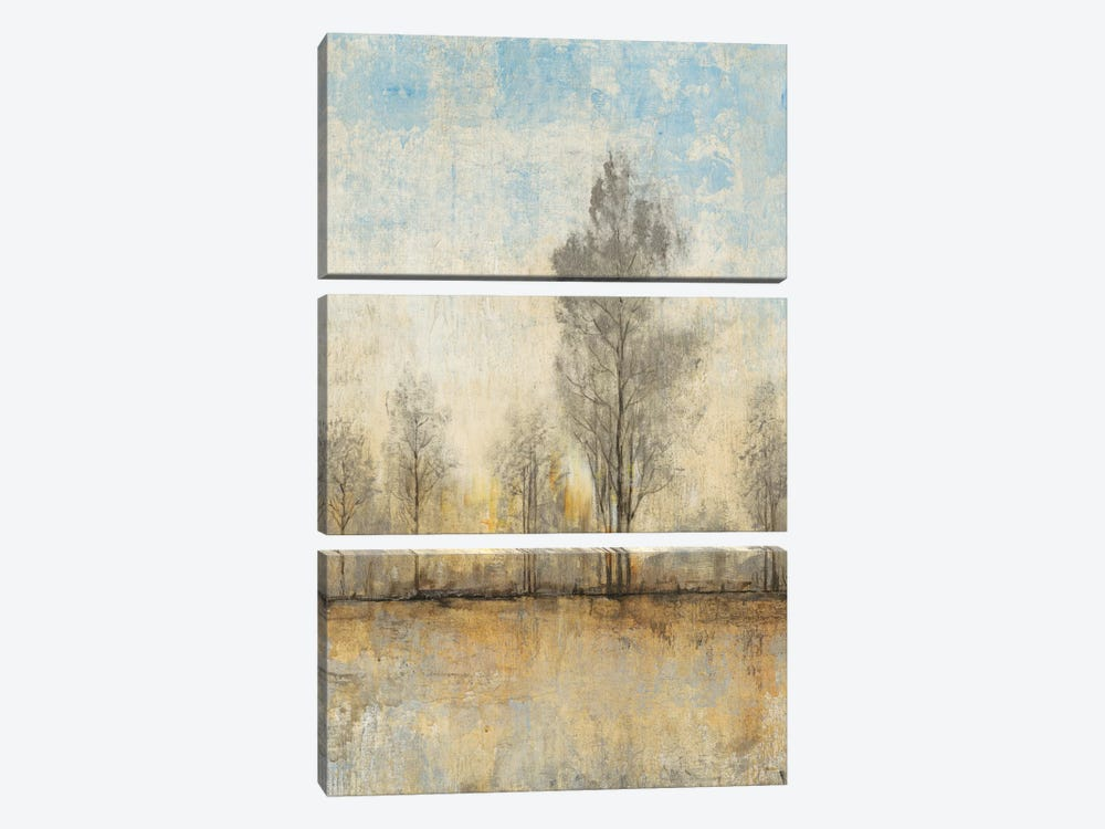 Quiet Nature I by Tim OToole 3-piece Canvas Print