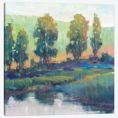Morning Lightscape II Canvas Print #TOT527} by Tim OToole Canvas Art Print