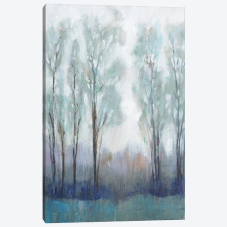 Through the Clearing II Canvas Print #TOT529} by Tim OToole Canvas Artwork