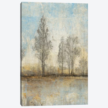 Quiet Nature II Canvas Print #TOT52} by Tim OToole Canvas Art