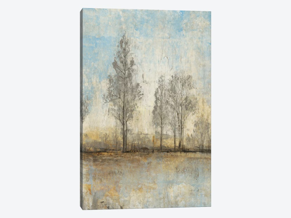 Quiet Nature II by Tim OToole 1-piece Canvas Artwork