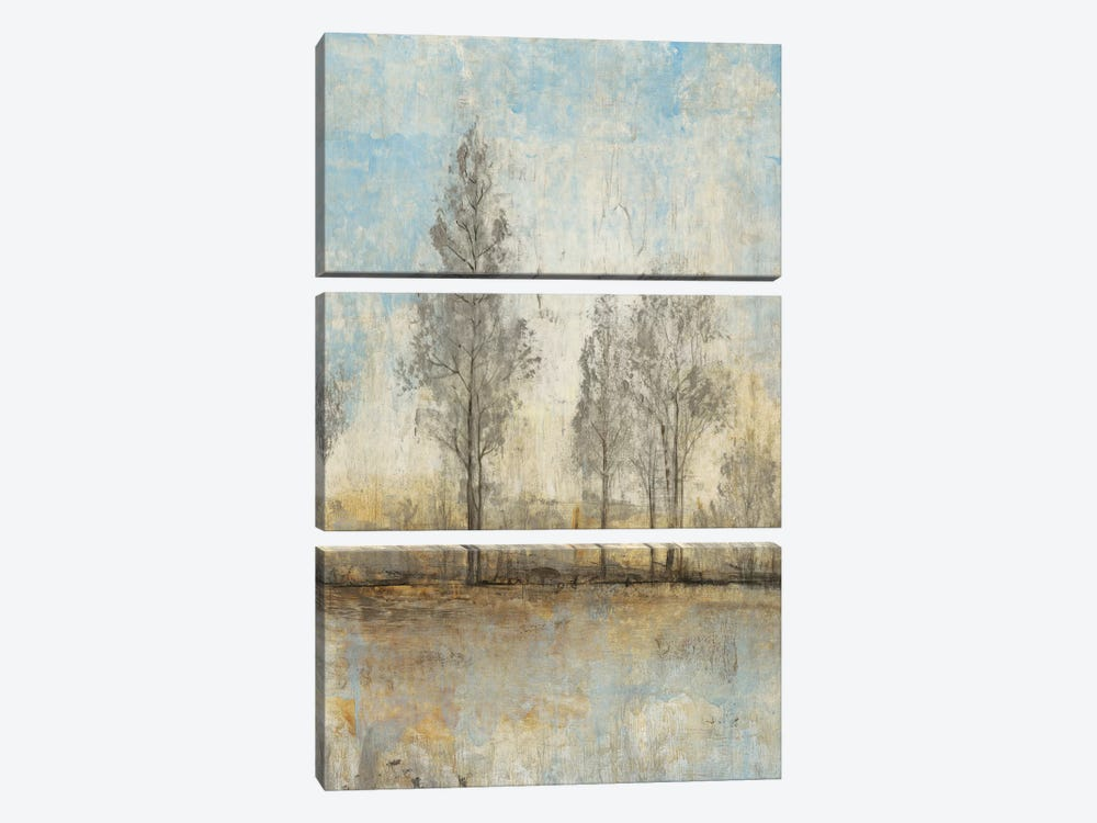 Quiet Nature II by Tim OToole 3-piece Canvas Artwork