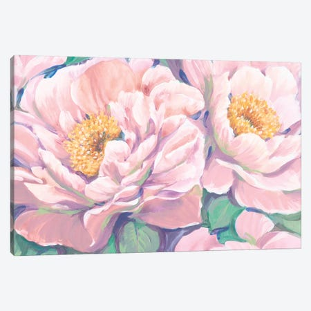 Peonies in Bloom II Canvas Print #TOT533} by Tim OToole Canvas Print