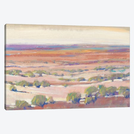 High Desert Pastels I Canvas Print #TOT544} by Tim OToole Canvas Print