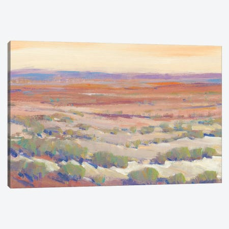 High Desert Pastels II Canvas Print #TOT545} by Tim OToole Canvas Print