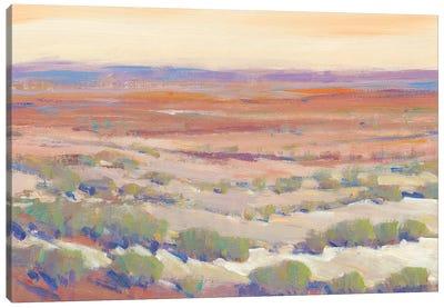 High Desert Pastels II Canvas Art Print