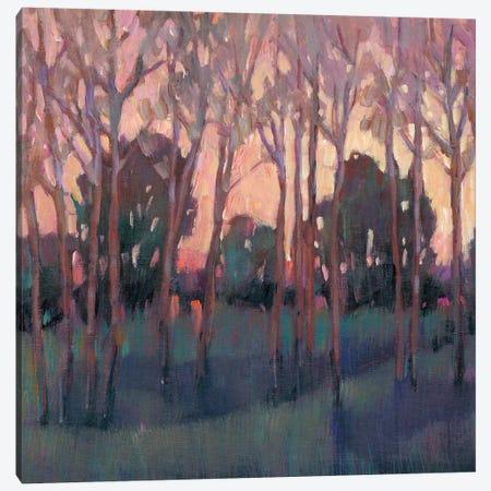 Morning Light I Canvas Print #TOT551} by Tim OToole Canvas Print