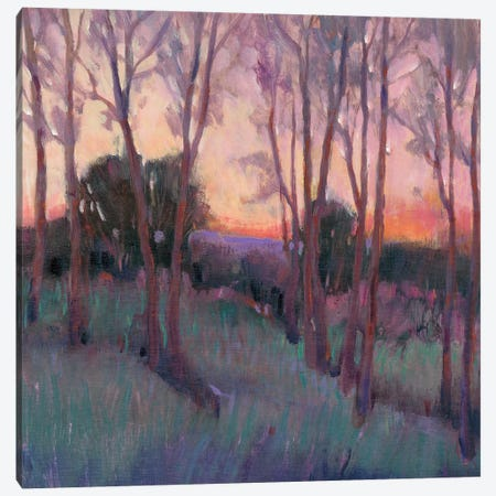 Morning Light II Canvas Print #TOT552} by Tim OToole Art Print