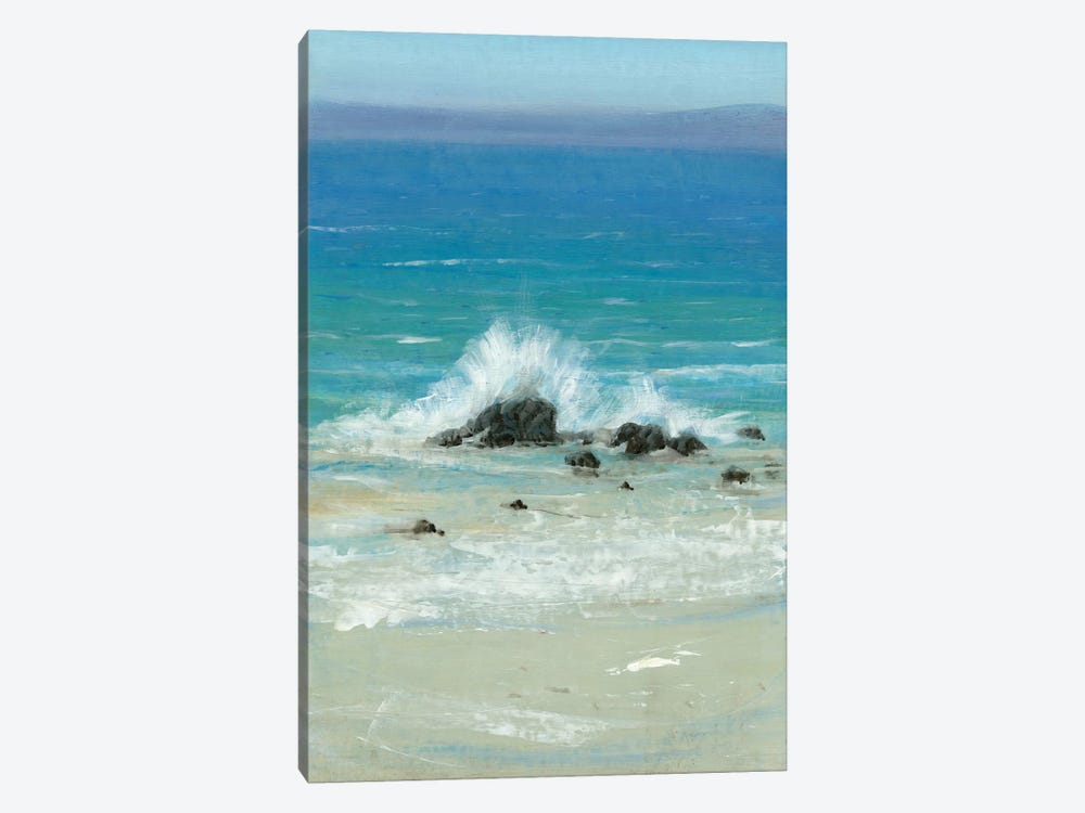 Salt Spray III by Tim O'Toole 1-piece Canvas Print