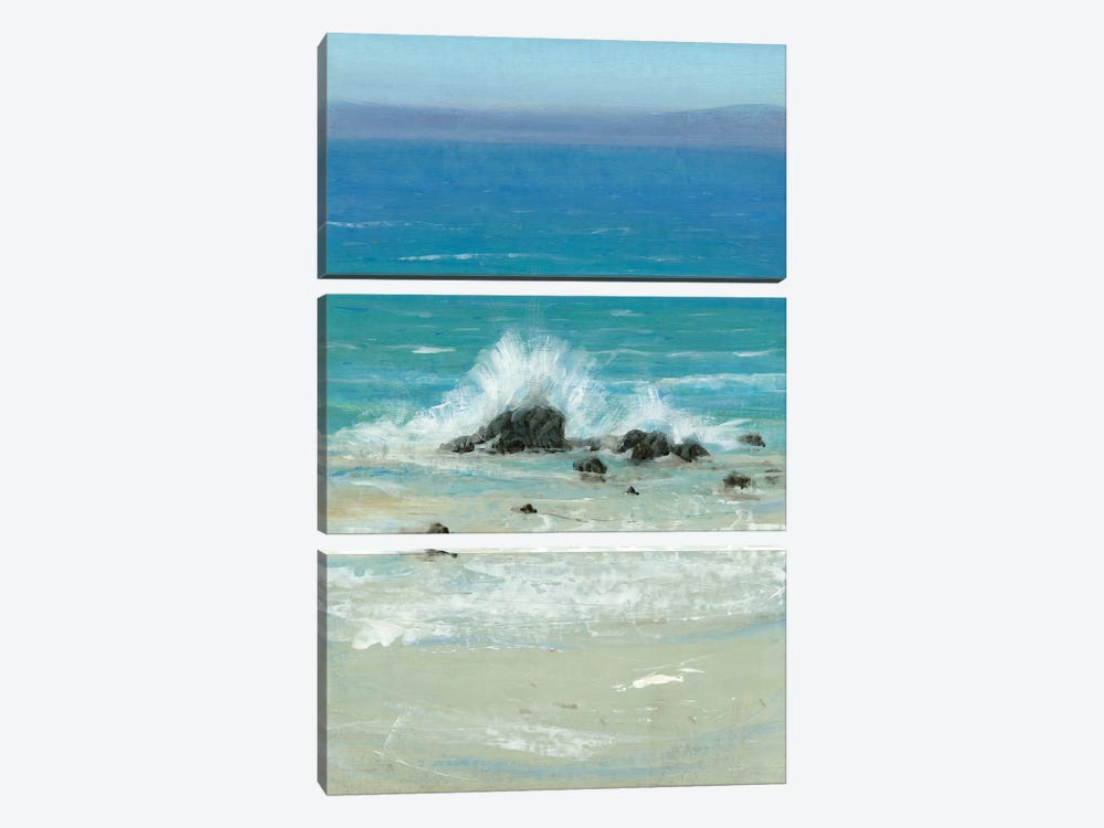 Salt Spray III by Tim O'Toole 3-piece Canvas Art Print
