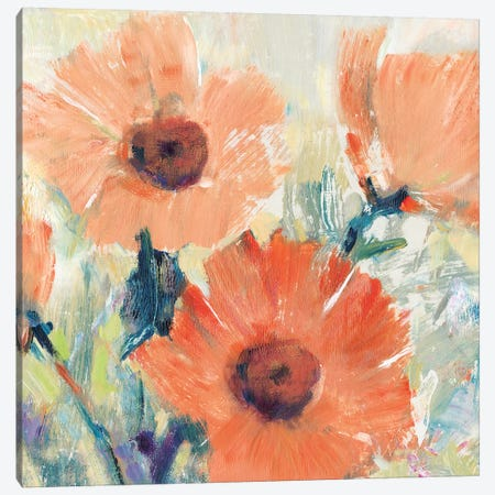 Flowers in Bloom I Canvas Print #TOT561} by Tim OToole Canvas Art