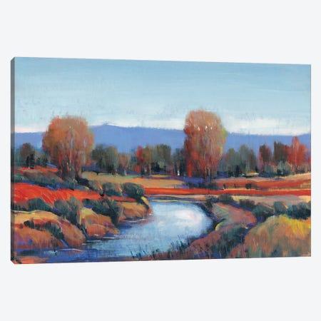 Hidden Creek II Canvas Print #TOT564} by Tim OToole Canvas Print