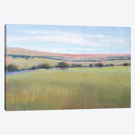 Hill Country I Canvas Print #TOT565} by Tim OToole Art Print