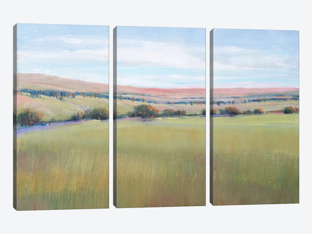 Hill Country I by Tim OToole 3-piece Canvas Artwork