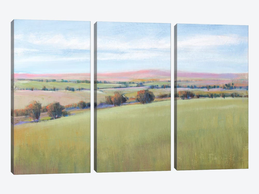 Hill Country II by Tim OToole 3-piece Canvas Print