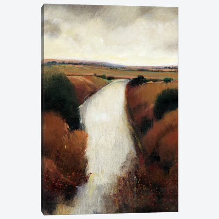 Misty River II Canvas Print #TOT568} by Tim OToole Canvas Wall Art