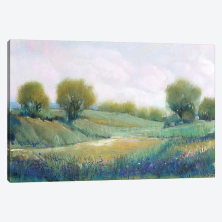 Paysage I Canvas Print #TOT569} by Tim OToole Canvas Artwork