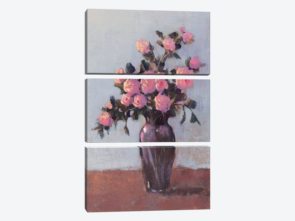 Soft Lit Roses I by Tim O'Toole 3-piece Canvas Wall Art
