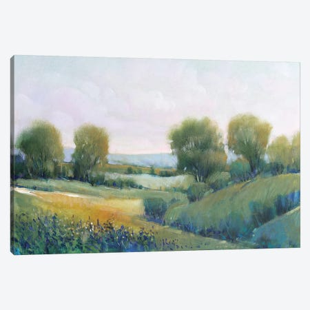 Paysage II Canvas Print #TOT570} by Tim OToole Art Print