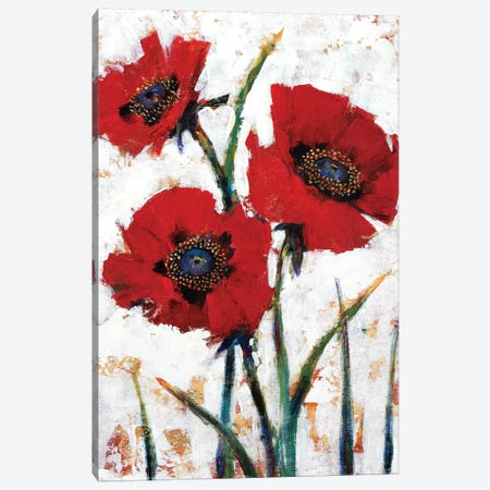 Red Poppy Fresco I Canvas Print #TOT571} by Tim OToole Canvas Art Print