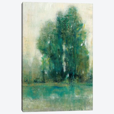Spring Paysage II Canvas Print #TOT574} by Tim OToole Canvas Wall Art