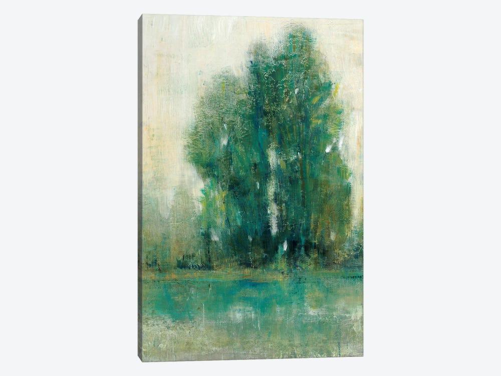 Spring Paysage II by Tim OToole 1-piece Canvas Artwork