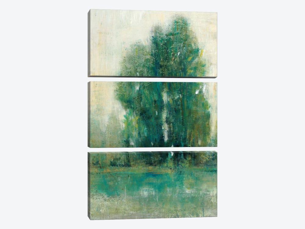 Spring Paysage II by Tim OToole 3-piece Canvas Art