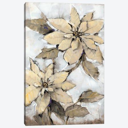 Poinsettia Study I 3-Piece Canvas #TOT575} by Tim OToole Canvas Art