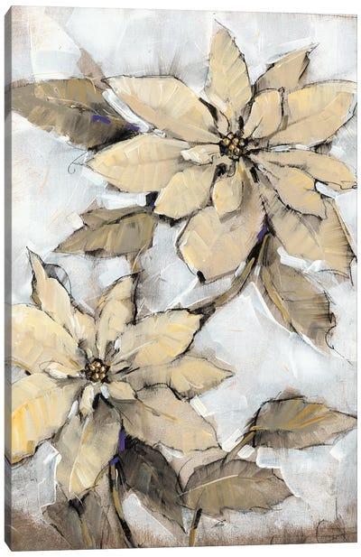 Poinsettia Study I Canvas Art Print
