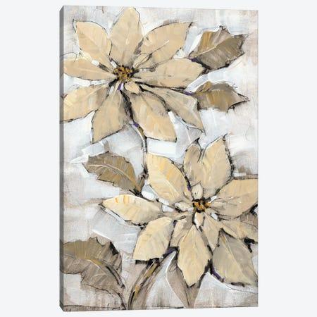 Poinsettia Study II Canvas Print #TOT576} by Tim OToole Canvas Art