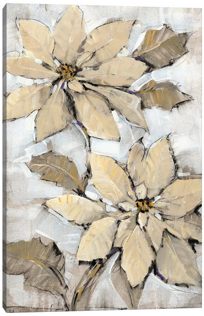 Poinsettia Study II Canvas Art Print