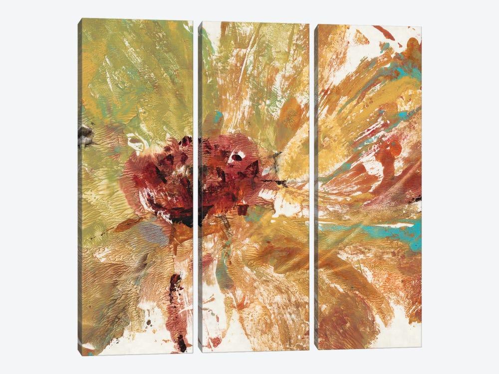 Splash I by Tim OToole 3-piece Canvas Artwork