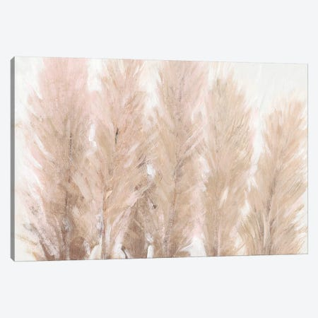 Pampas Grass I Canvas Print #TOT593} by Tim OToole Canvas Print