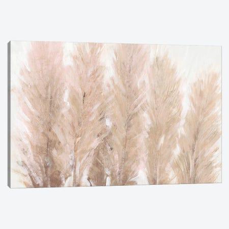 Pampas Grass I Canvas Print #TOT593} by Tim OToole Canvas Print