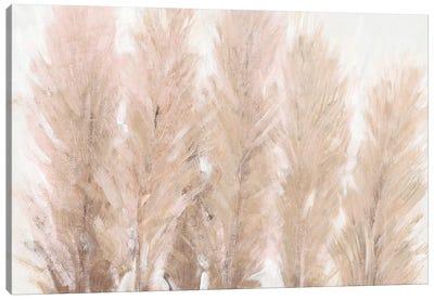 Pampas Grass I Canvas Art Print