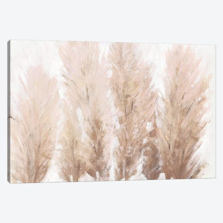 Pampas Grass II Canvas Print #TOT594} by Tim OToole Canvas Wall Art
