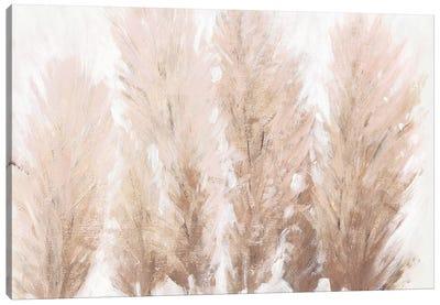 Pampas Grass II Canvas Art Print
