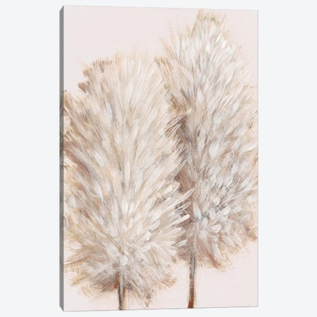 Pampas Grass III Canvas Print #TOT595} by Tim OToole Canvas Art