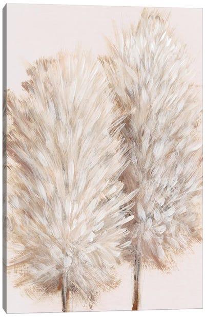 Pampas Grass III Canvas Art Print