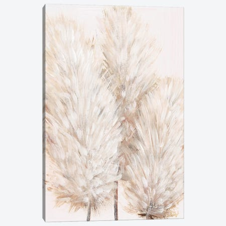 Pampas Grass IV Canvas Print #TOT596} by Tim OToole Canvas Artwork