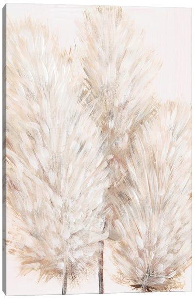 Pampas Grass IV Canvas Art Print
