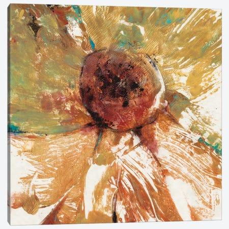 Splash II Canvas Print #TOT59} by Tim OToole Canvas Wall Art