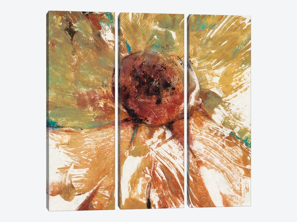 Splash II by Tim OToole 3-piece Canvas Print