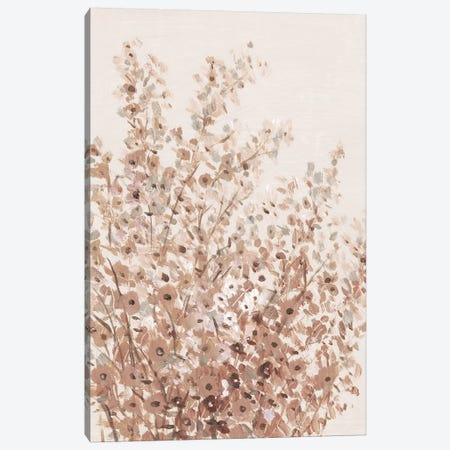 Rustic Wildflowers I Canvas Print #TOT601} by Tim OToole Canvas Print