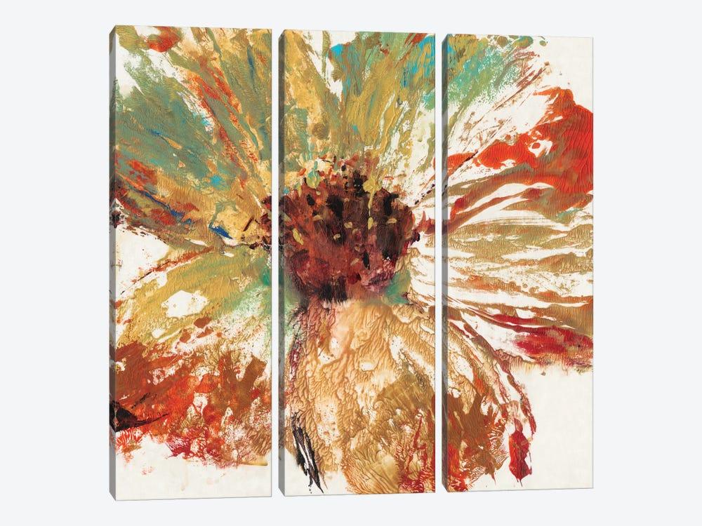 Splash III by Tim OToole 3-piece Art Print