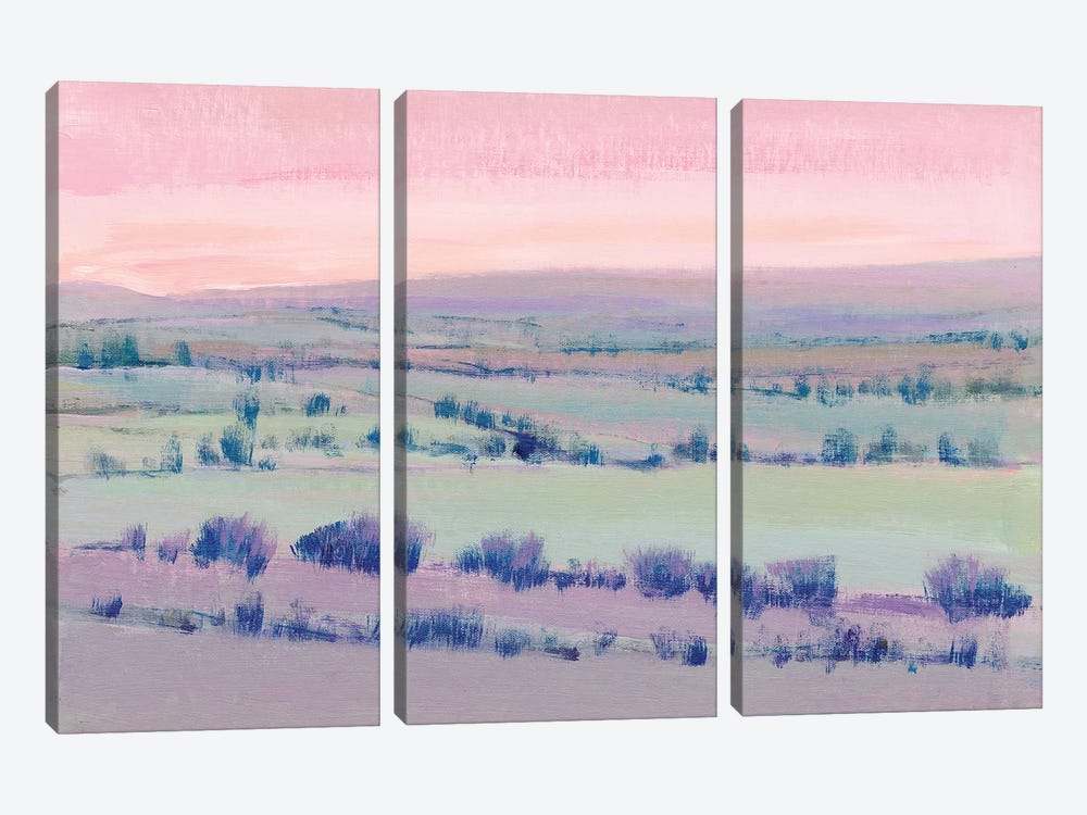 At Twilight I by Tim OToole 3-piece Canvas Art Print