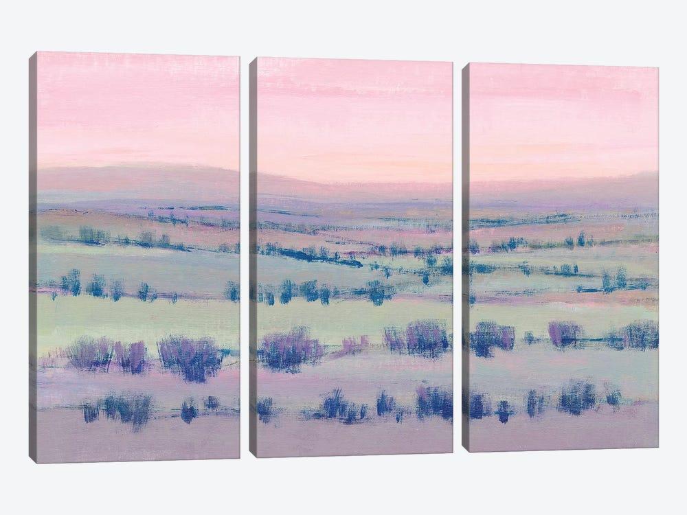 At Twilight II by Tim OToole 3-piece Canvas Wall Art