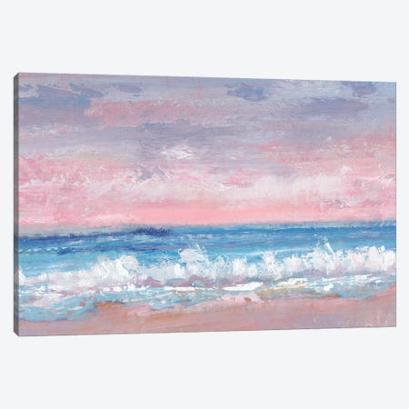 Coastal Pink Horizon I Canvas Print #TOT617} by Tim OToole Canvas Print