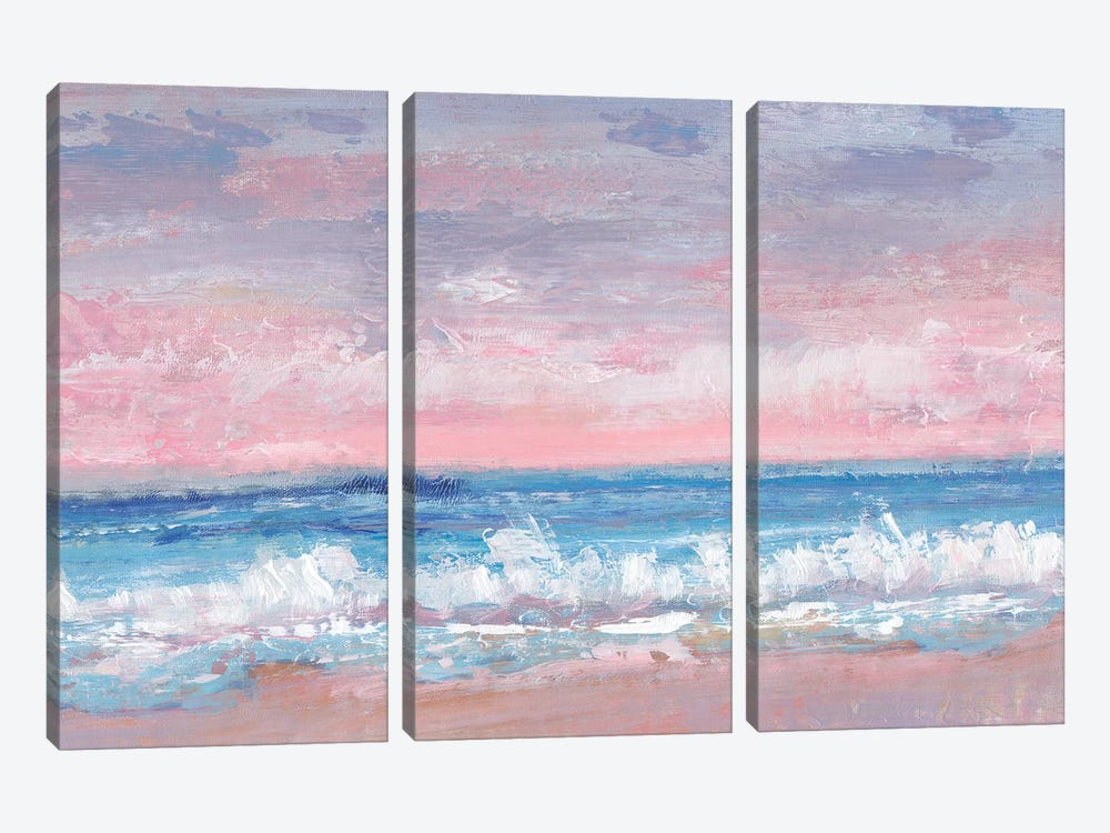 Coastal Pink Horizon I by Tim OToole 3-piece Canvas Art Print